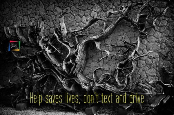 Help saves lives, don't text and drive