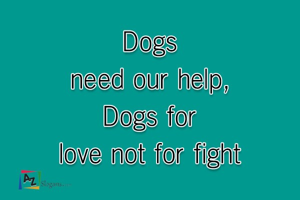 Dogs need our help, Dogs for love not for fight