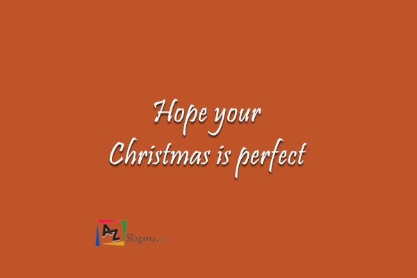 Hope your Christmas is perfect
