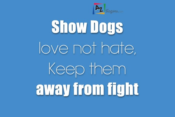 Show Dogs love not hate, Keep them away from fight