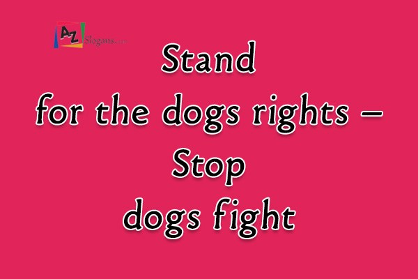 Stand for the dogs rights – Stop dogs fight