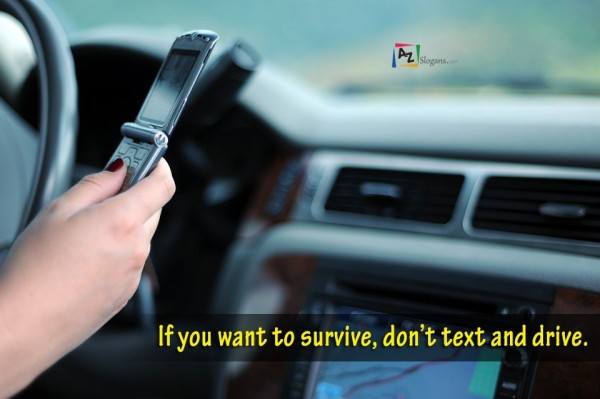If you want to survive, don't text and drive.