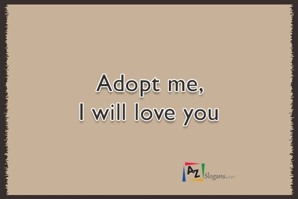 Adopt me, I will love you