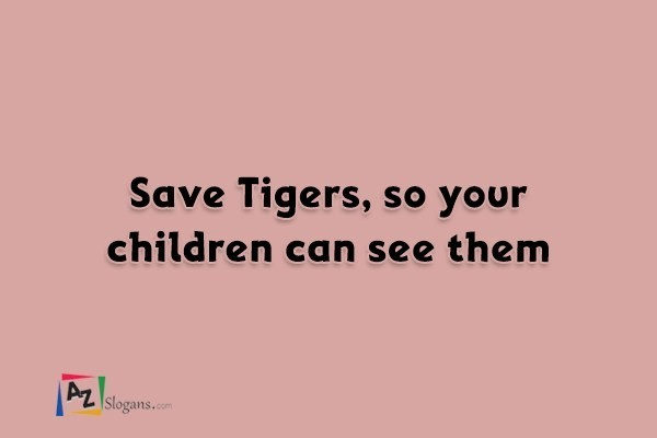 Save Tigers, so your children can see them