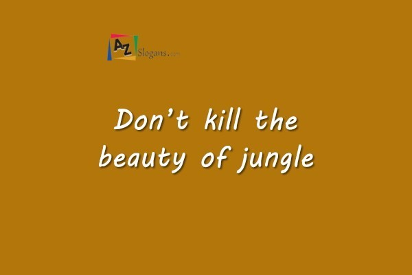 Don't kill the beauty of jungle