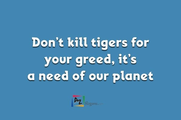 Don't kill tigers for your greed, it's a need of our planet