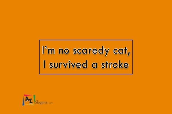 I'm no scaredy cat, I survived a stroke