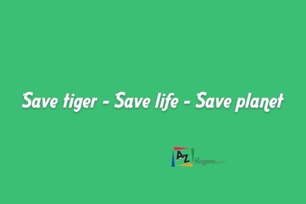 Save tiger – Save life – Save planet