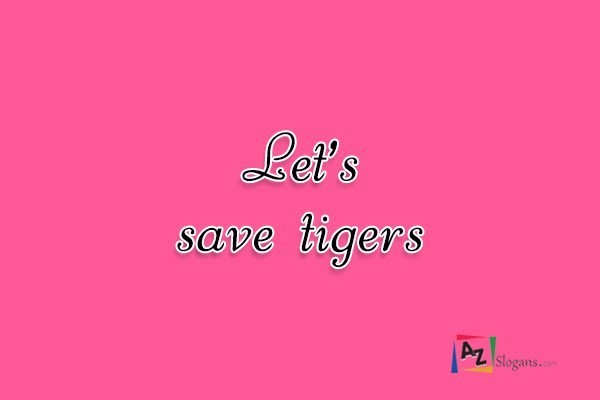 Let's save tigers