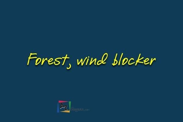 Forest, wind blocker