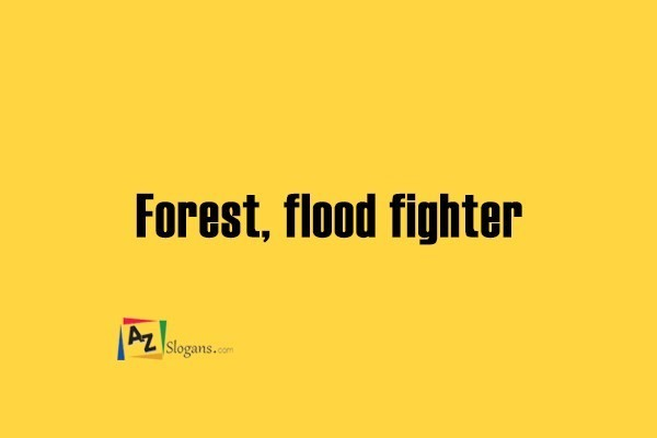 Forest, flood fighter