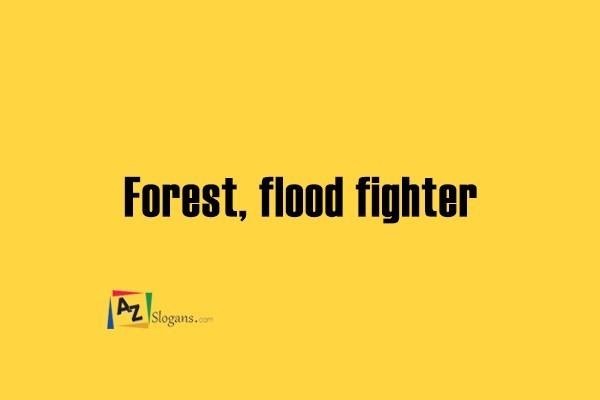Forest, flood fighter