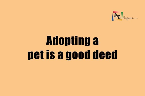 Adopting a pet is a good deed
