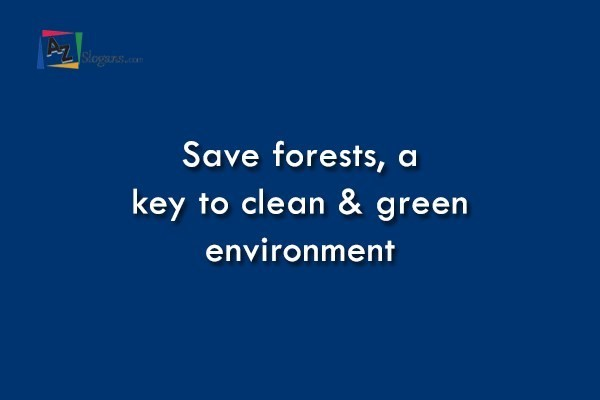 Save forests, a key to clean & green environment