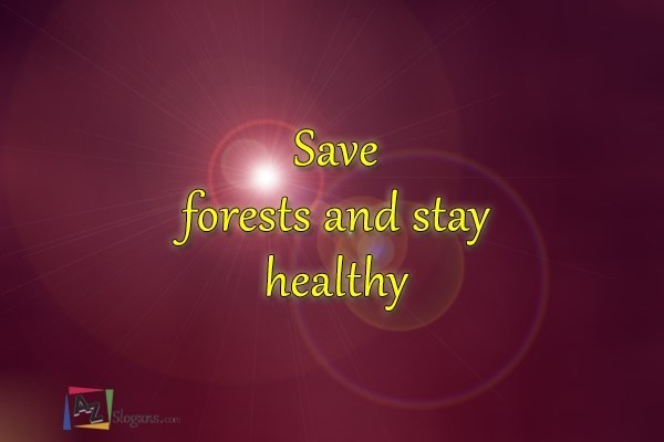 Save forests and stay healthy