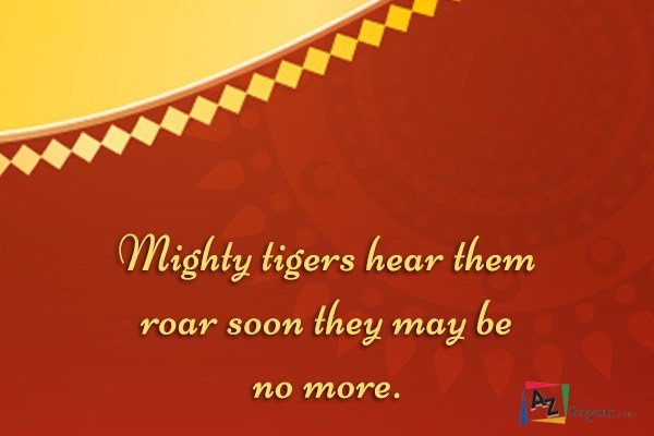 Mighty tigers hear them roar soon they may be no more.