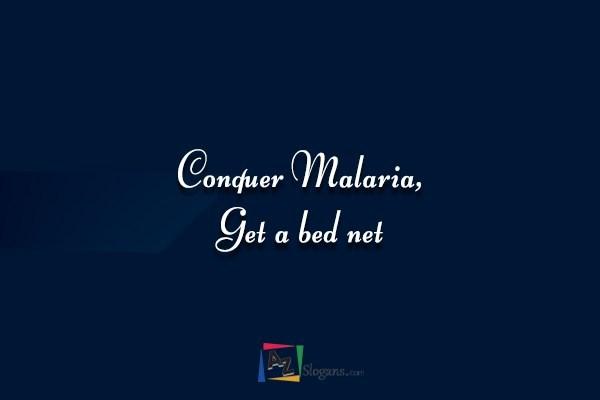 Conquer Malaria, Get a bed net