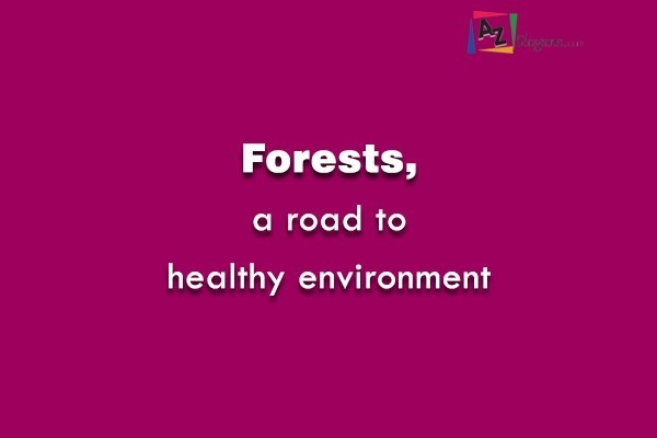 Forests, a road to healthy environment