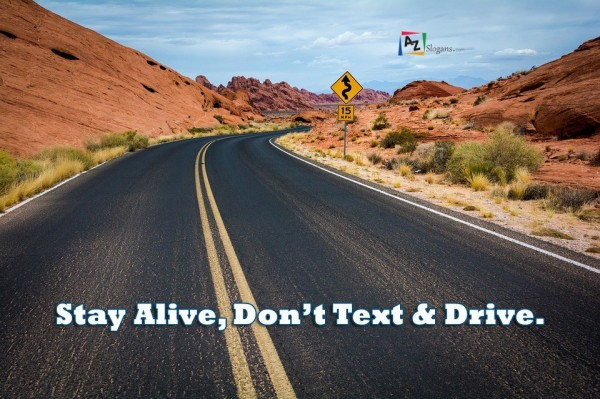 Stay Alive, Don't Text & Drive.