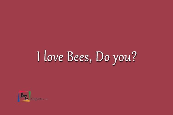 I love Bees, Do you?