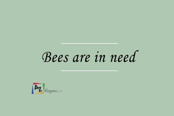 Bees are in need
