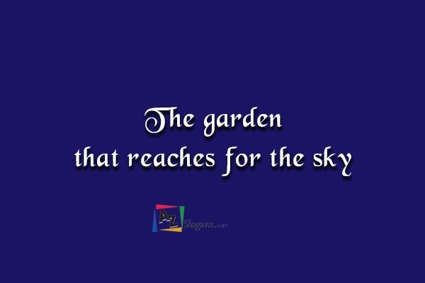 The garden that reaches for the sky