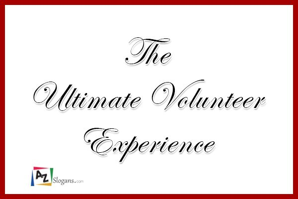 The Ultimate Volunteer Experience