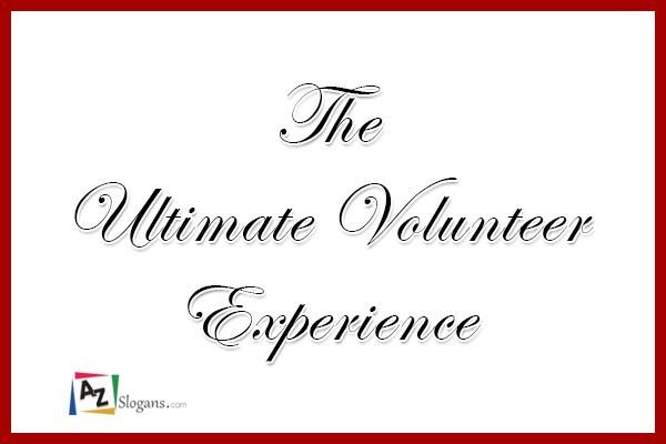 The Ultimate Volunteer Experience