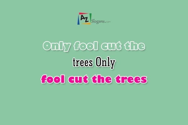 Only fool cut the trees