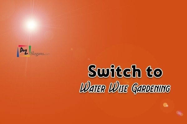 Switch to Water Wise Gardening