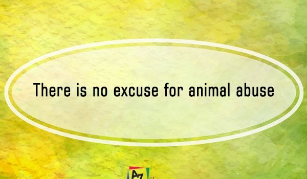 There is no excuse for animal abuse