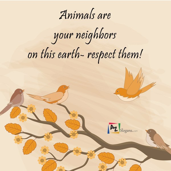 Animals are your neighbors on this earth- respect them!