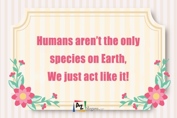 Humans aren't the only species on Earth, We just act like it!