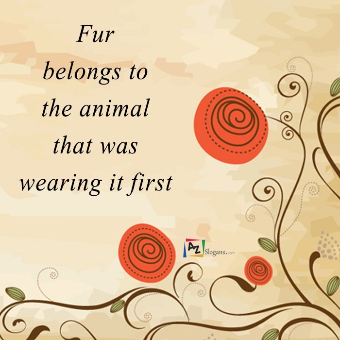 Fur belongs to the animal that was wearing it first