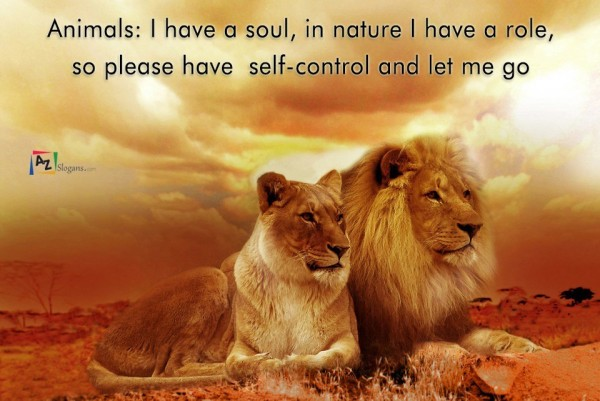 Animals: I have a soul, in nature I have a role, so please have self-control and let me go