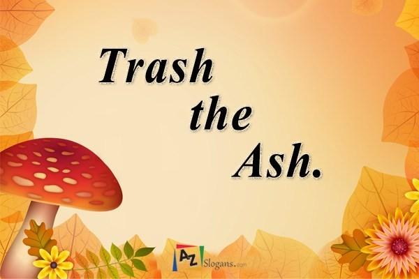 Trash the Ash.