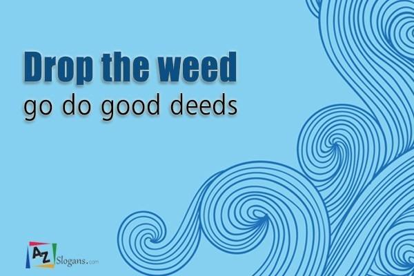 Drop the weed go do good deeds