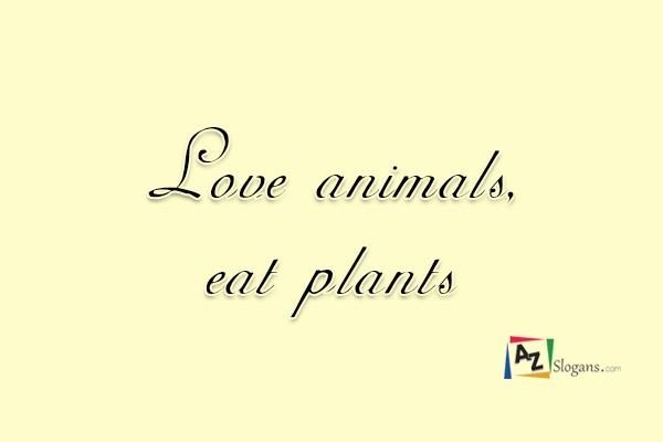 Love animals, eat plants