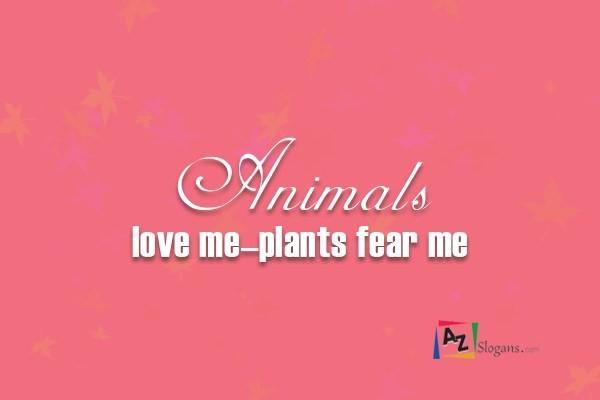 Animals love me–plants fear me