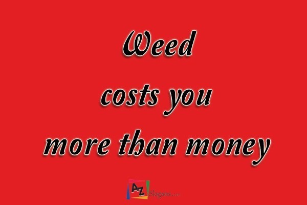 Weed costs you more than money