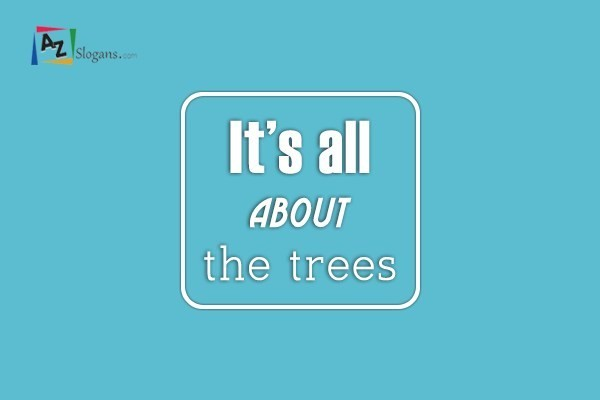 It's all about the trees