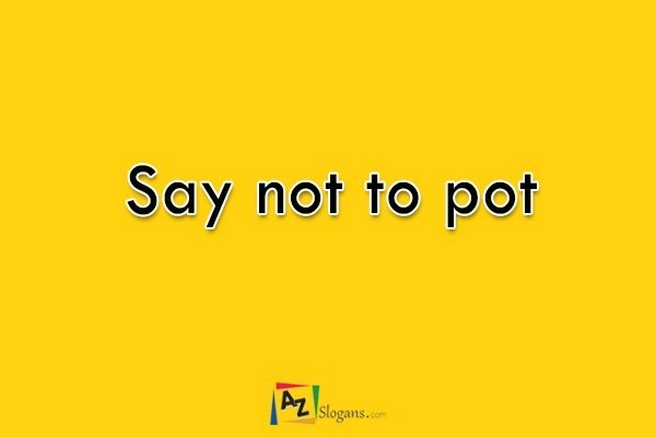 Say not to pot