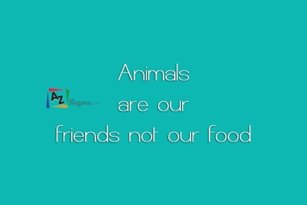 Animals are our friends not our food