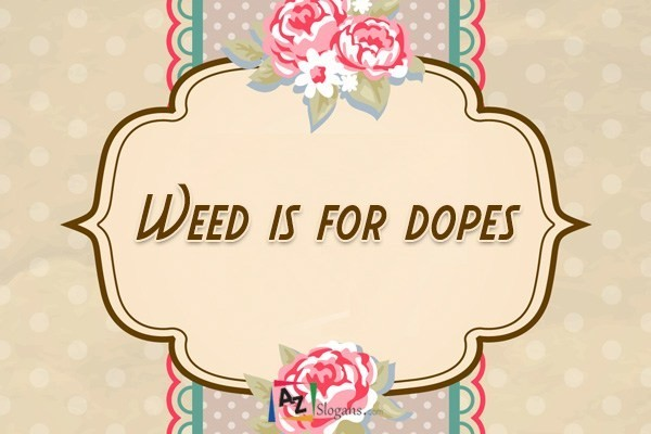 Weed is for dopes