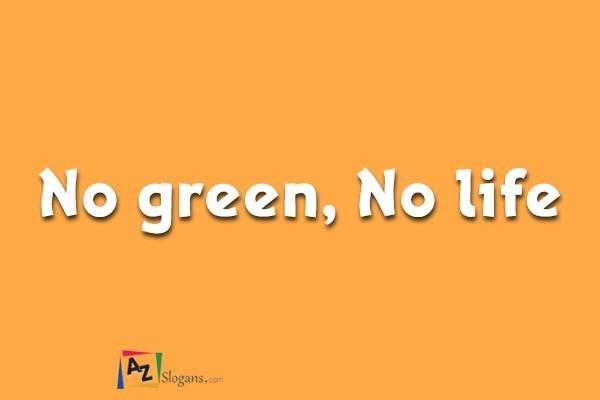 No green, No life