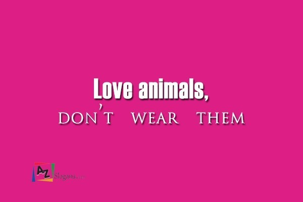 Love animals, don't wear them