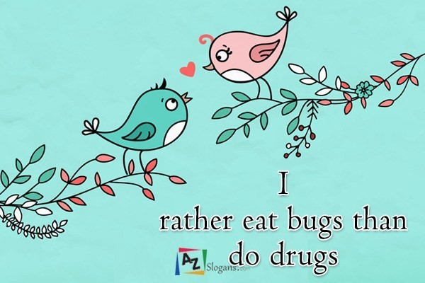 I rather eat bugs than do drugs